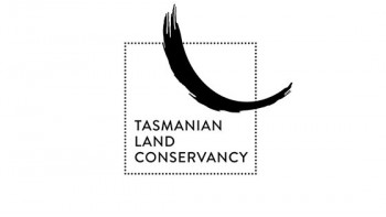 Tasmanian Land Conservancy's logo