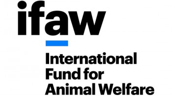 International Fund for Animal Welfare's logo