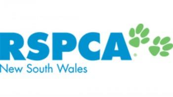 RSPCA NSW 's logo