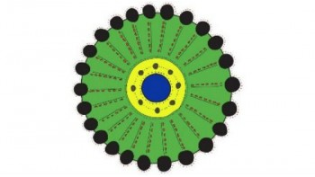 Thamarrurr Development Corporation's logo