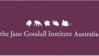 Jane Goodall Institute's logo